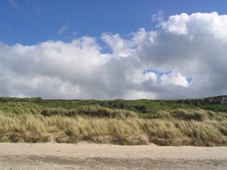 Sand-Dunes2