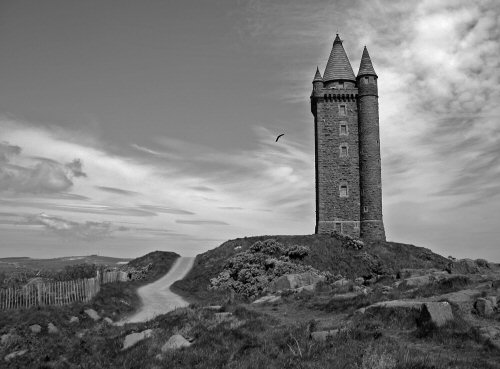 Scrabo Tower_JulieStewart
