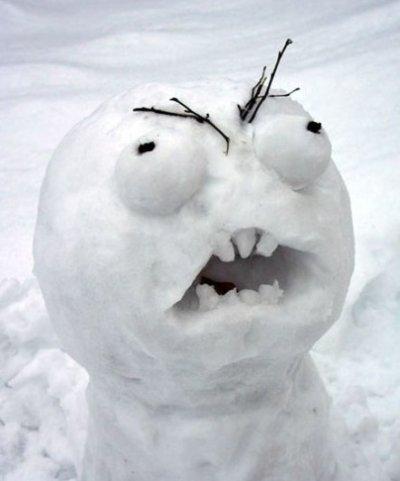 Snow-MEME