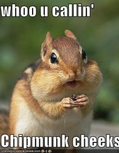 Chipmunk Cheeks